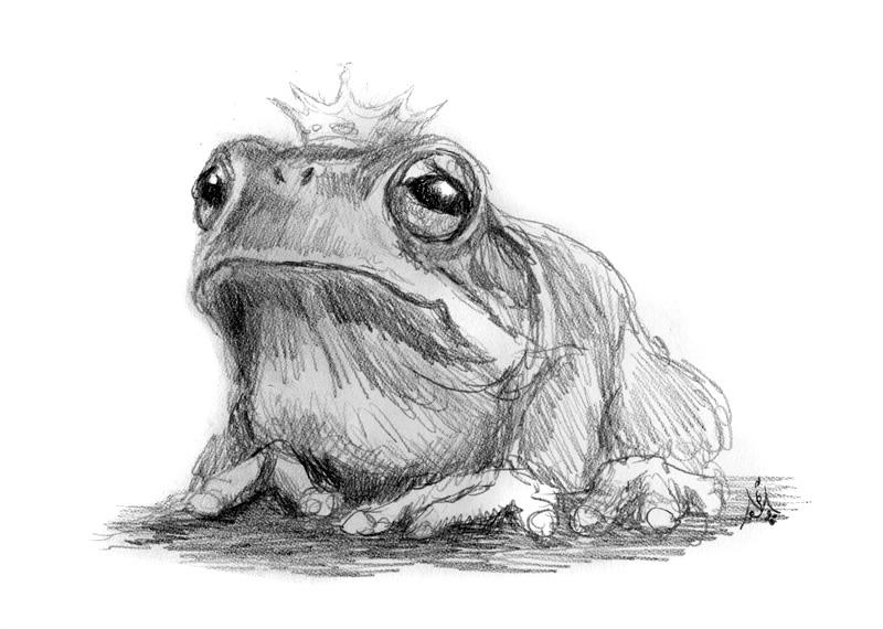 13_01_4134s_The_frog_prince001_BW_enh_800