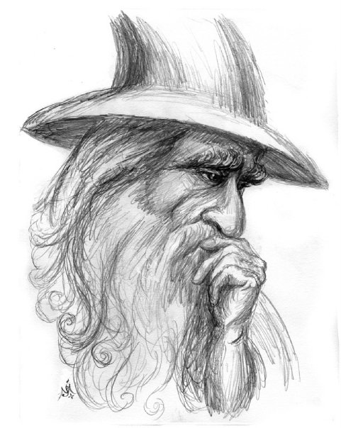 the_grey_wizard