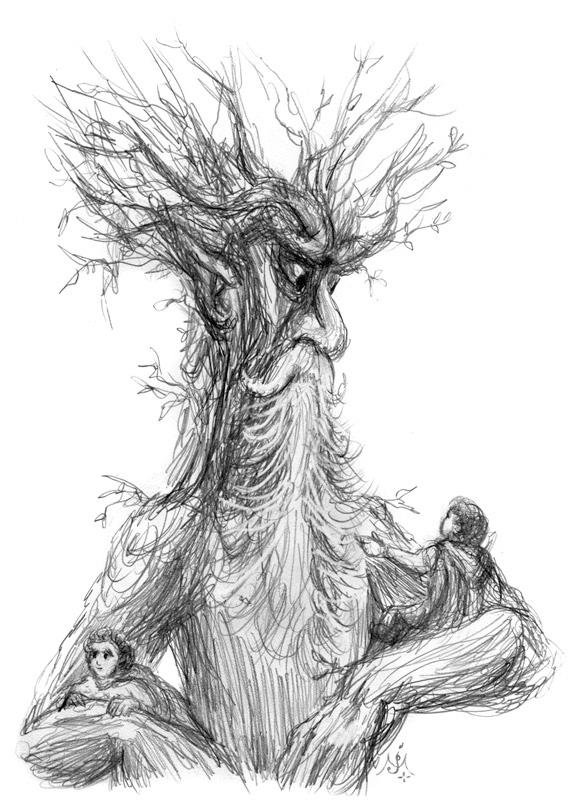 Treebeard_sketch_enh_800