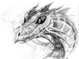 Feisty Dragon