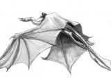 Winged Wraith