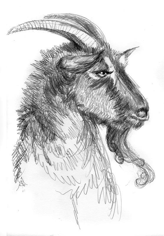 14_04_4315s_Billy_goats_gruff001_BW_enh_800