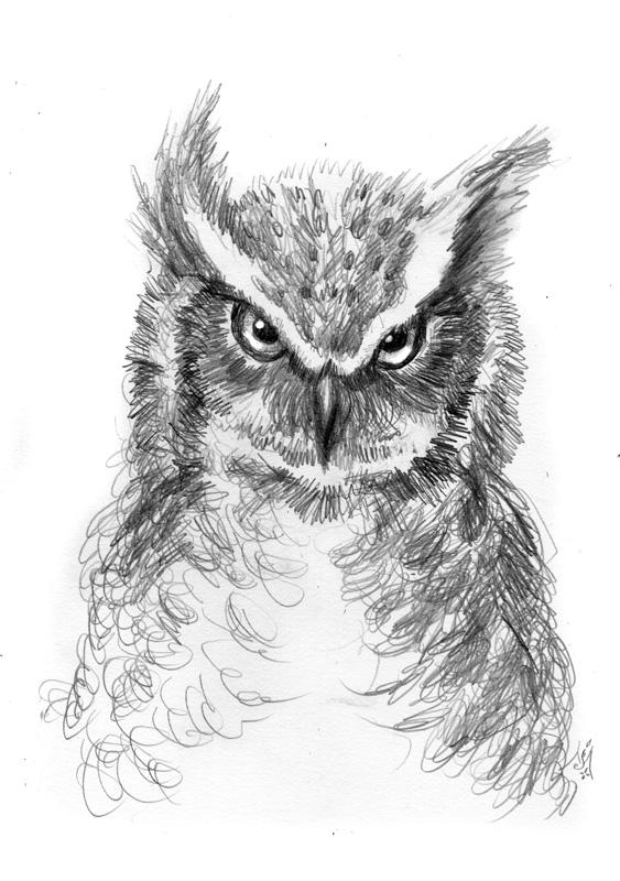 14_08_4343s_Owl_express001_BW_enh_800